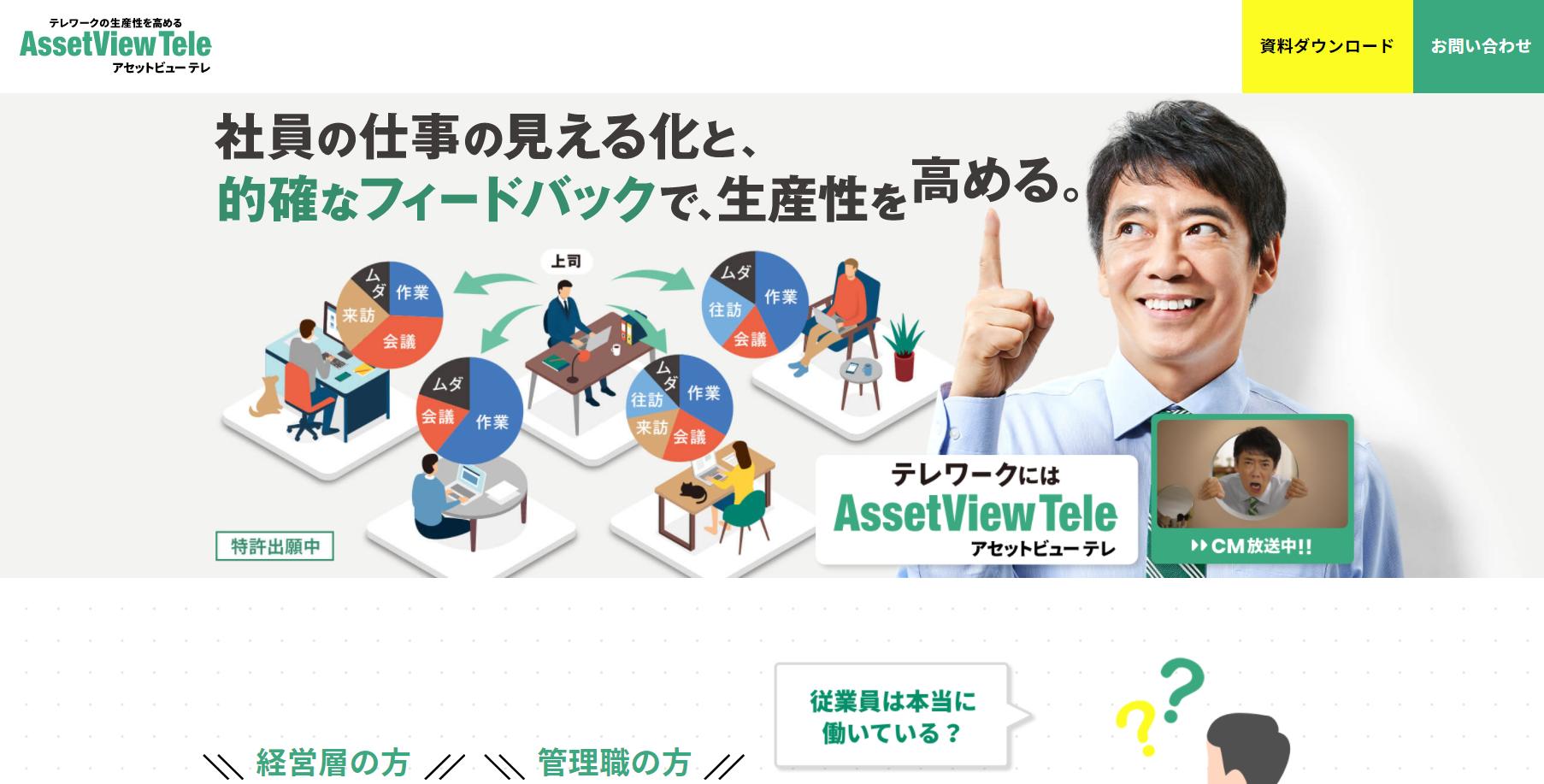 AssetView Tele